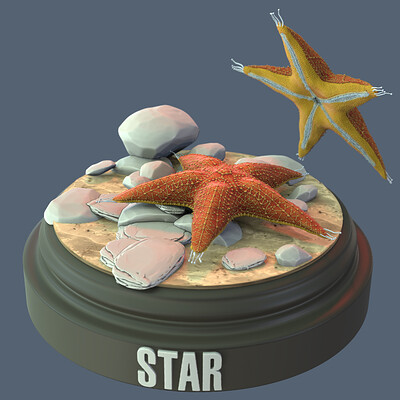 Sandor allexr veres sandor allexr veres day08 star csillag 1 ins