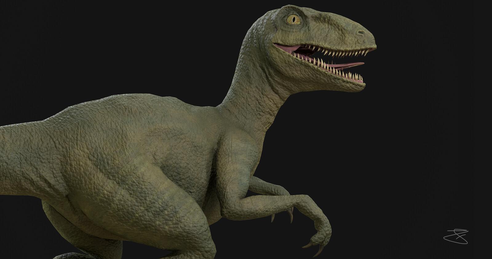 Betsy, The Velociraptor