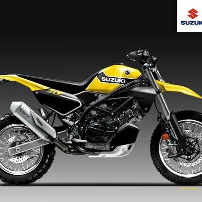 Oberdan bezzi oberdan bezzi suzuki sv 650 rally yellow weapon