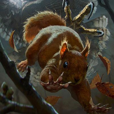 Anna podedworna anna podedworna squirrel finprev