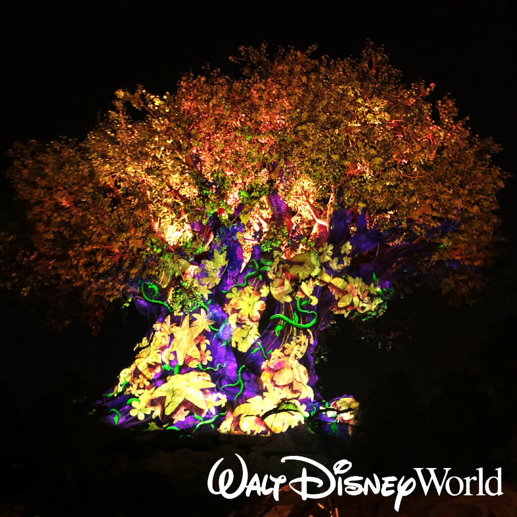The Tree of Life Awakens 2019 - Animal Kingdom Projection Mapping Show