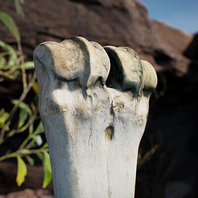 Photoscanned Animal Bones