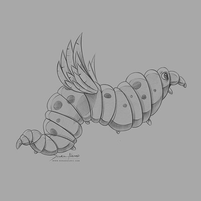 Butterfly worm, sketch done with Photoshop