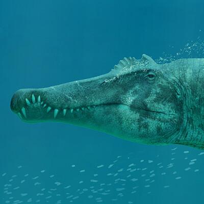 Frederic wierum frederic wierum spinosaurus4