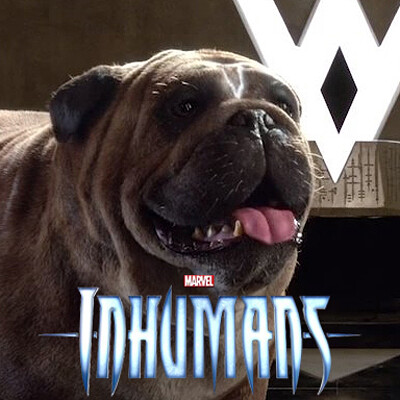 Lockjaw - Marvel Inhumans