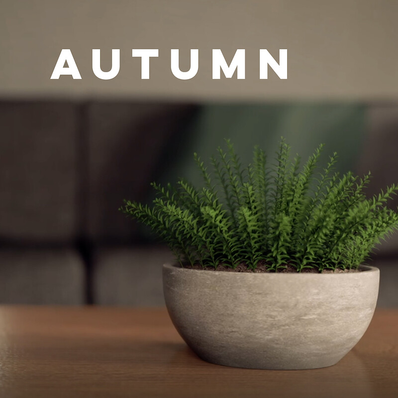 Autumn Animation