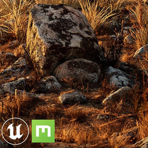 Megascans Assemblies - Dry Grass [UE4]
