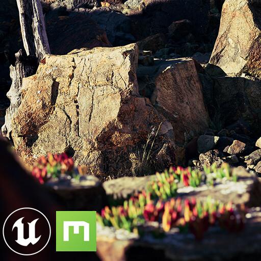 Megascans Assemblies - Lava Field [UE4]