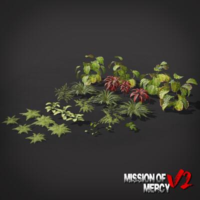Jordan d waka jordan d waka momv2 plants