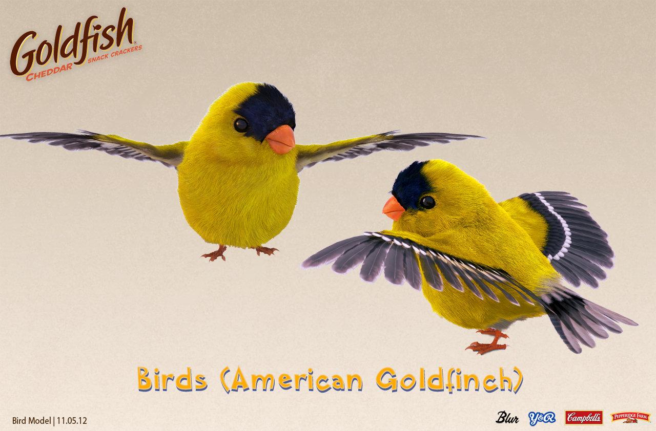 Bird Sample Still