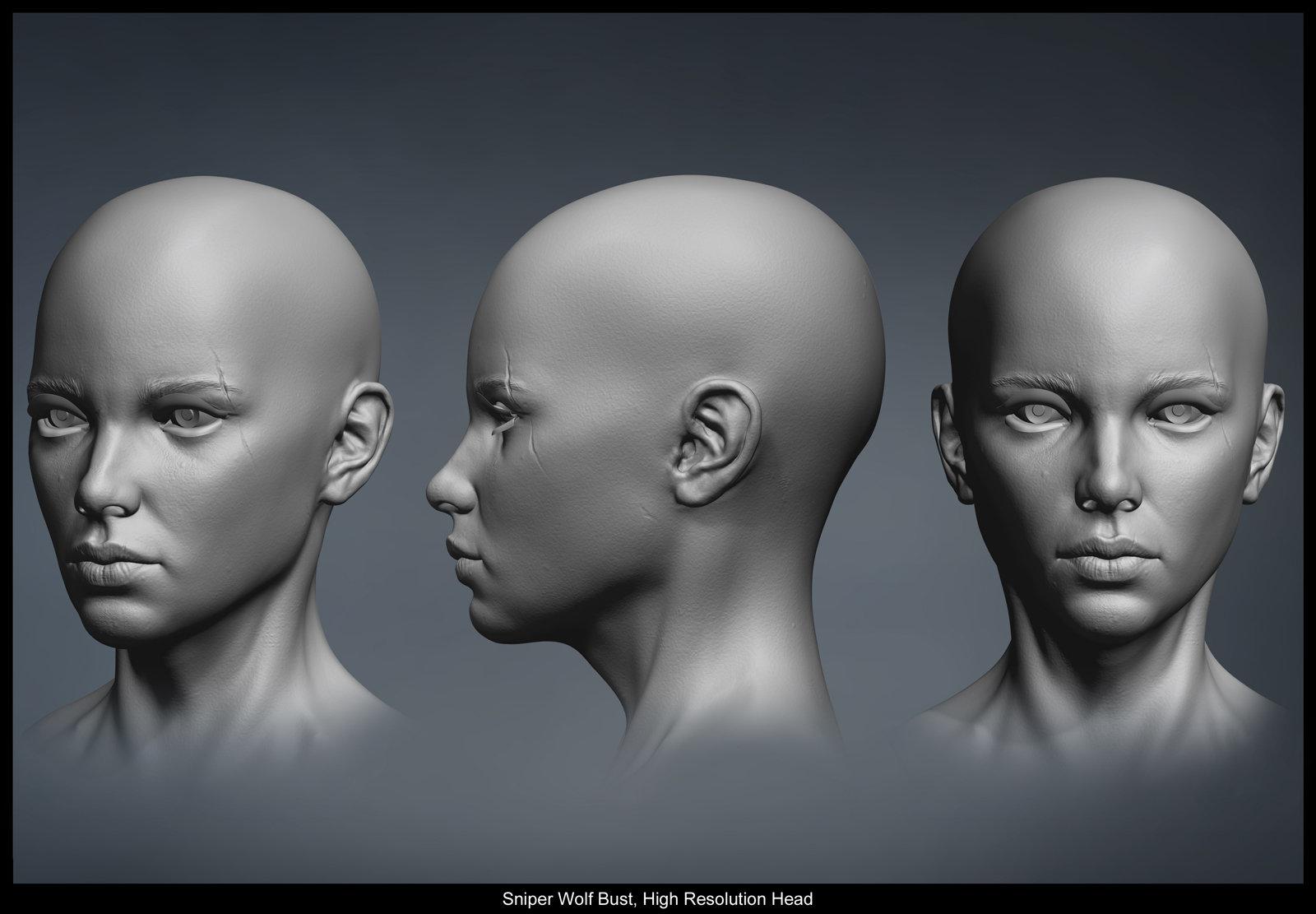 Hires model head
