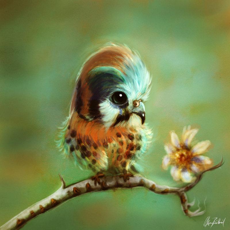 Littlebird01