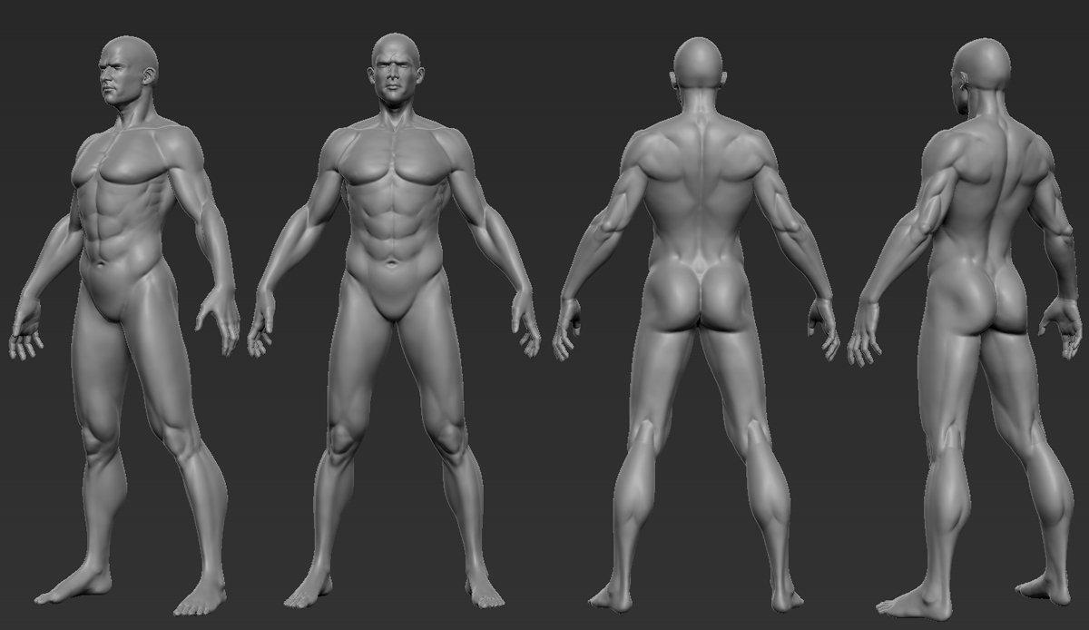 Singgih Kuncoro - Male anatomy study