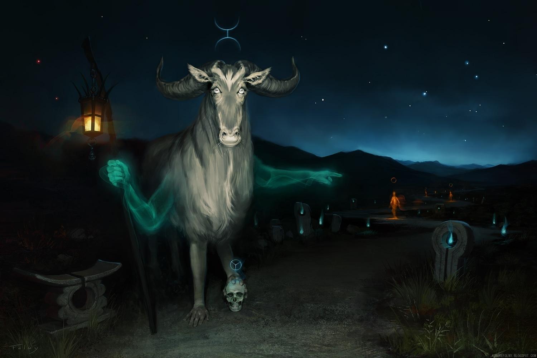 Le passeur final aurorefolny