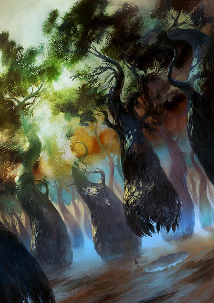 05 vmeignaud forest