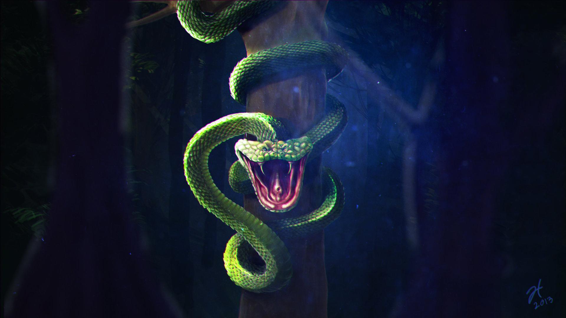 Обои На Телефон Змея