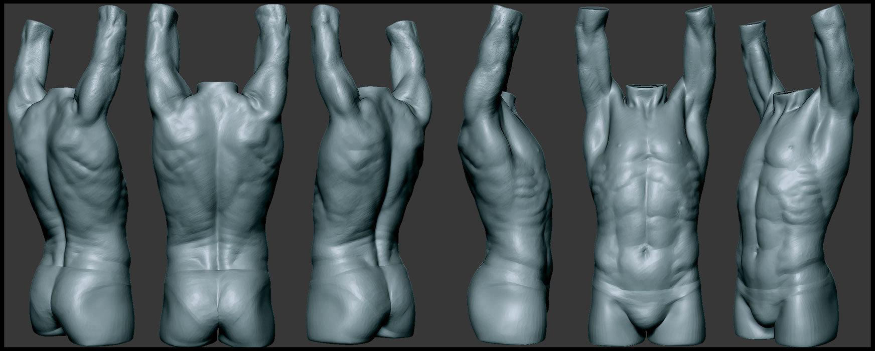 Ronan Rouxel - Scott Eaton\'s Digital Anatomy Course: Torso ...