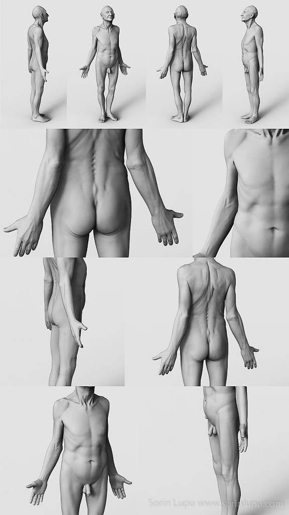 Old man anatomy study