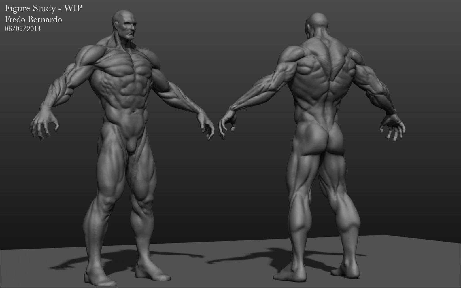 Male Figure Study (WIP)