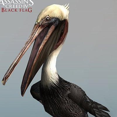 Marthin agusta pelican 2