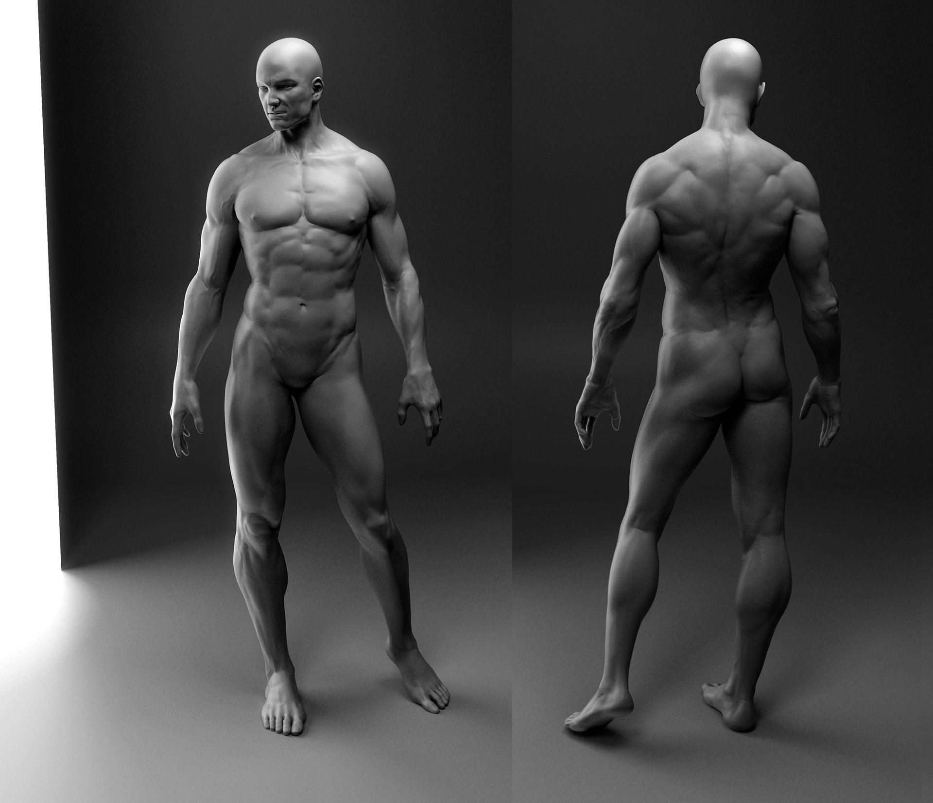 automob 3d anatomy tutorial - HD1920×1651