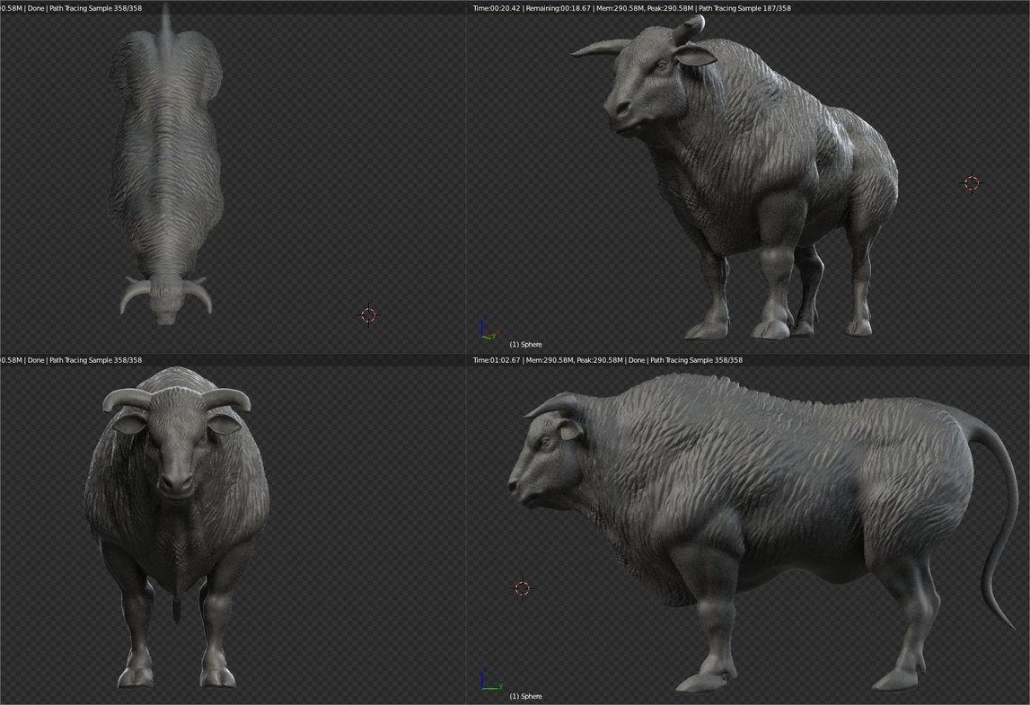 Stefano ciarrocchi bull 01 1