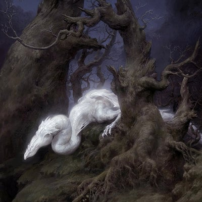 Tianhua xu white dragon2