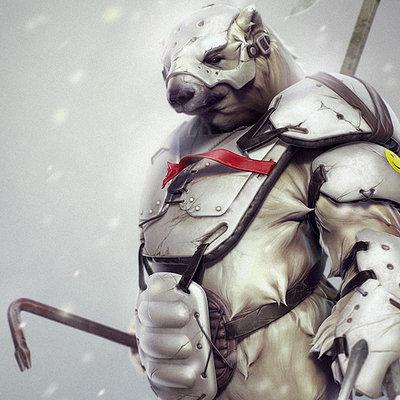 Northern warrior