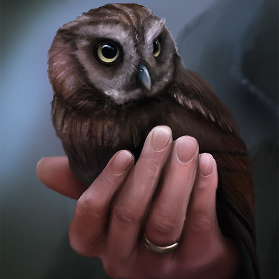 Chris coppoletti in the eyes of owls by fusobotic d6hw1ez