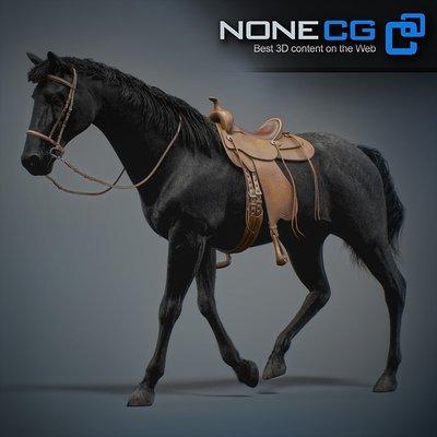 Jesus pedrosa horses nonecg 05 1
