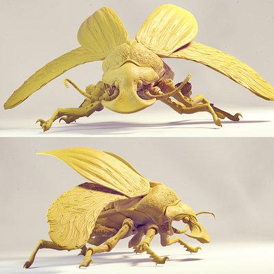Todor kolev boar beetle 1