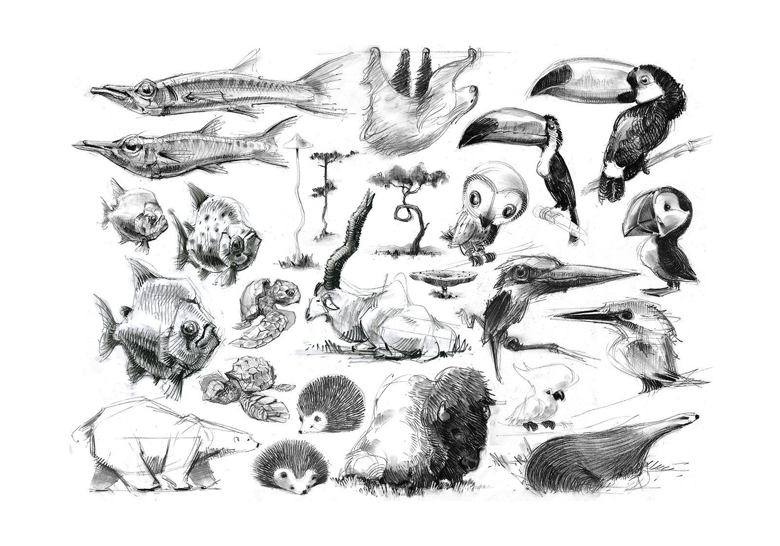Jean brice dugait 32 animals caricatures jb dugait