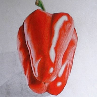Pete mc nally sketch colpencil peppers01