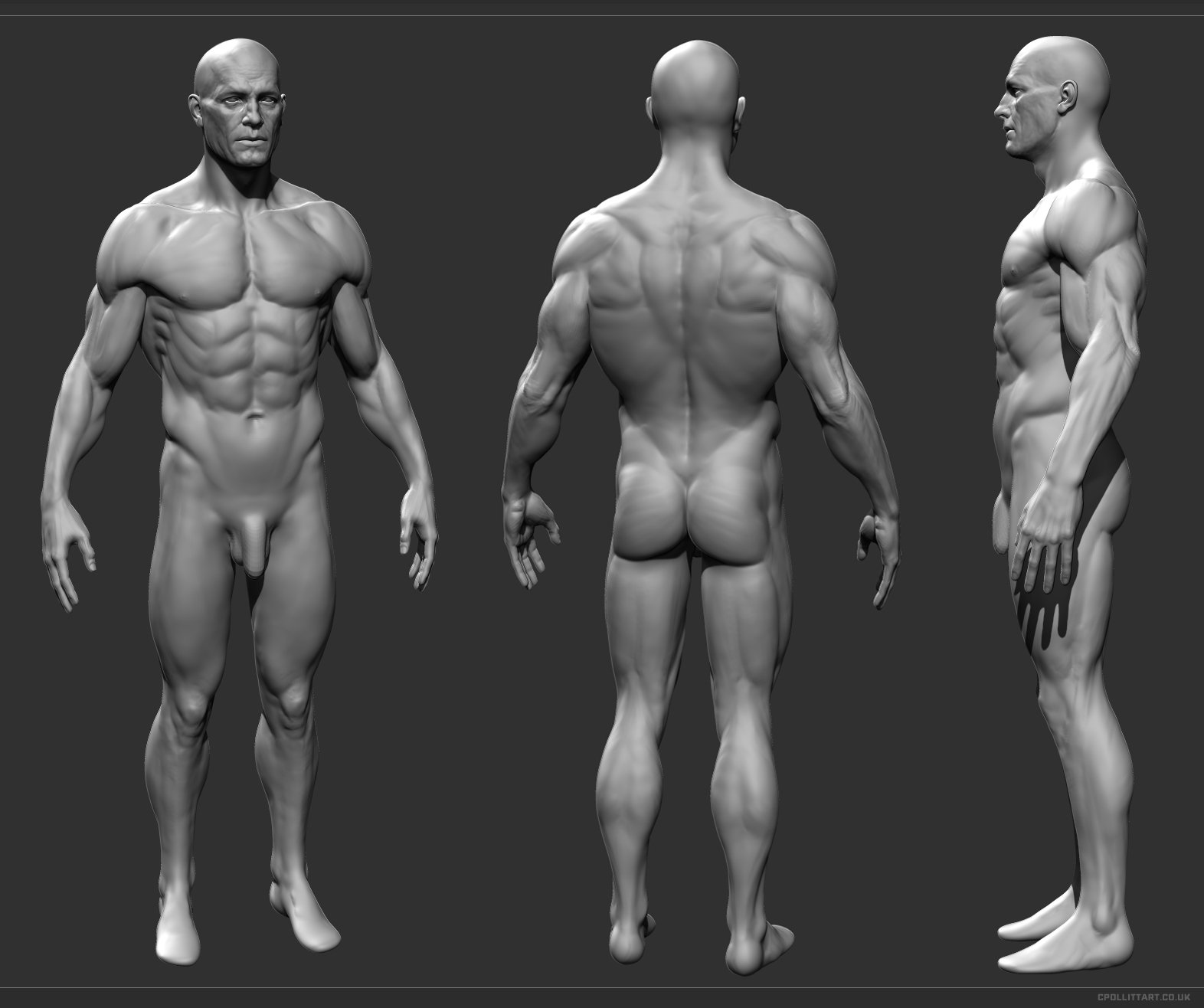 ArtStation - Mr Generic Anatomy, Chris Pollitt