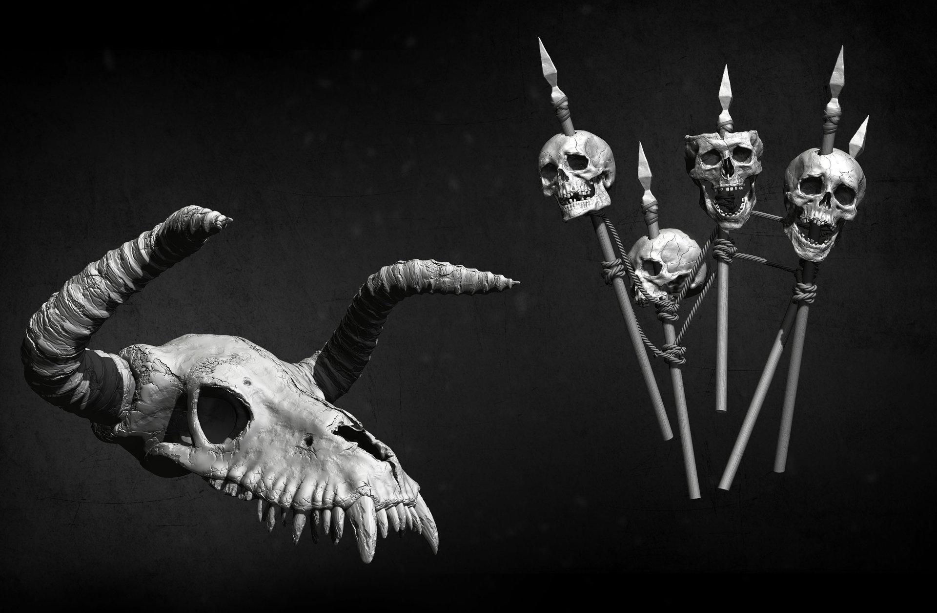 Amin akhshi skulls