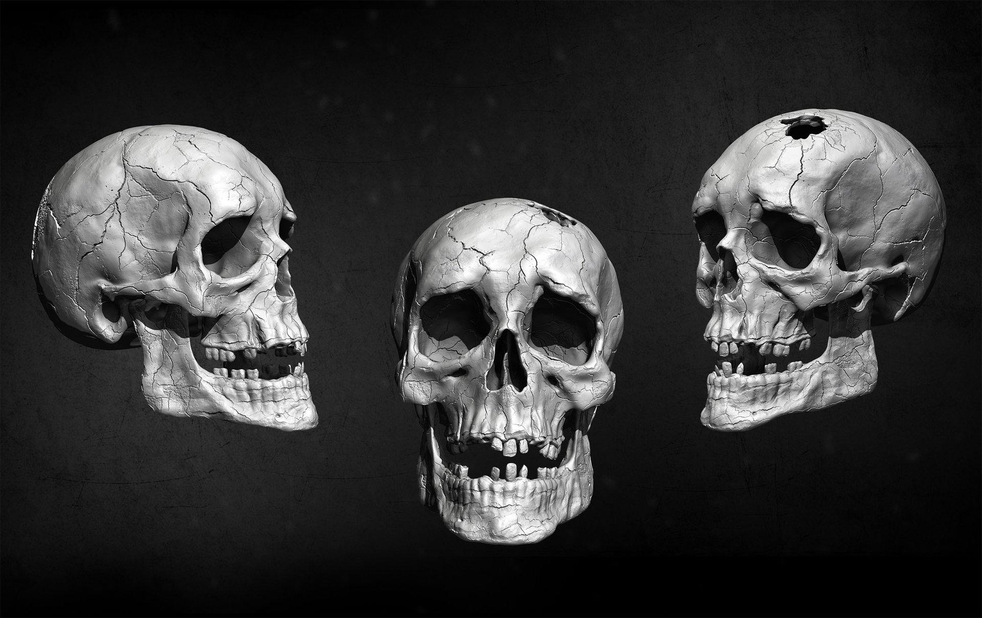 Amin akhshi human skull 1