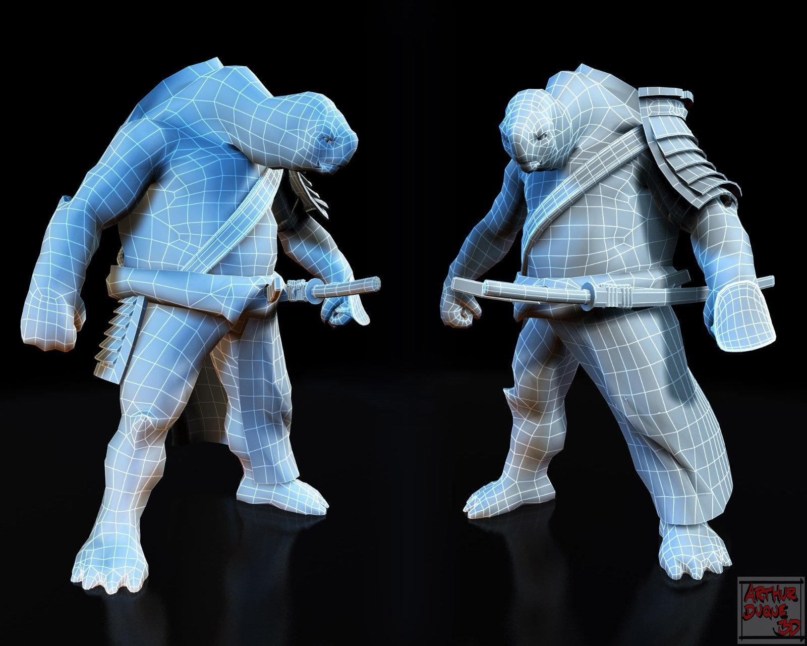 Arthur duque turtle 02