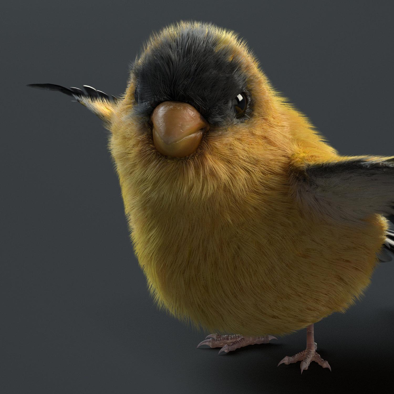 Bird Render
