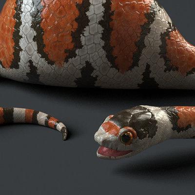 Daniel garcia snake render
