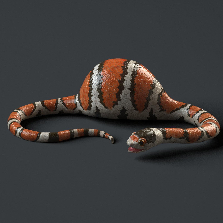 Snake Render