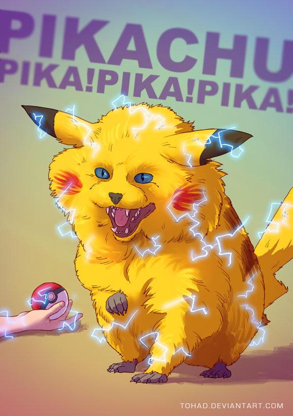Sylvain sarrailh pikachu