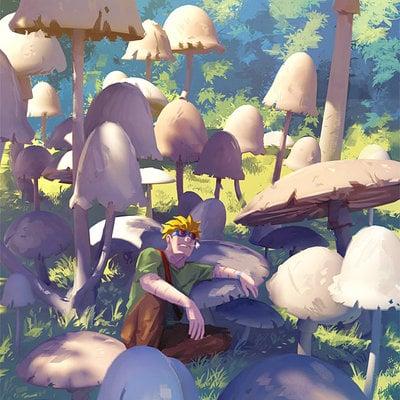 Sylvain sarrailh mushroom
