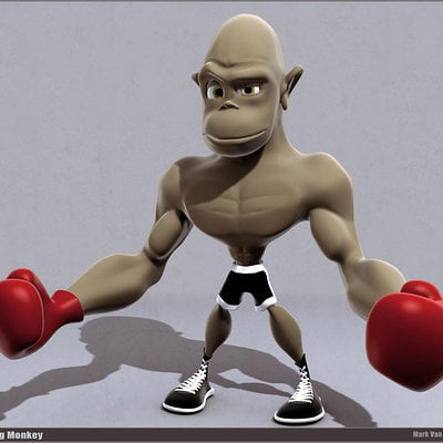 Mark van haitsma boxing monkey