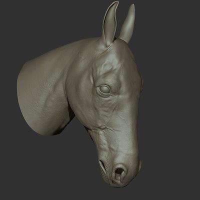 Ganesh poojari horse002