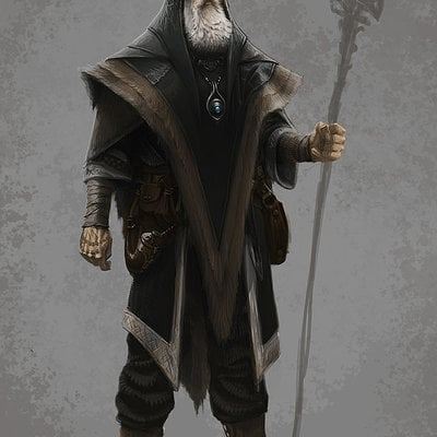 Ray lederer archmage robes dsktp