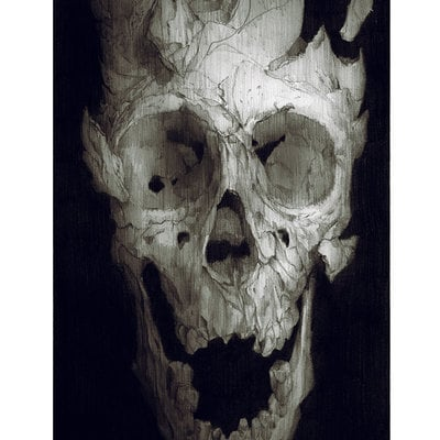 Fragmented skull low