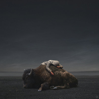 Yuri shwedoff buffalo recovered internet