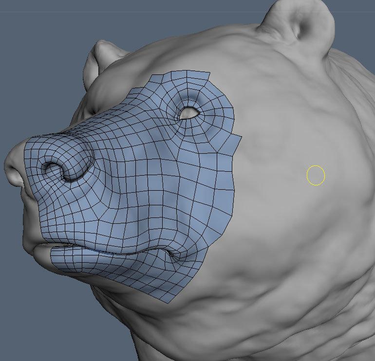Retopo 3Dcoat