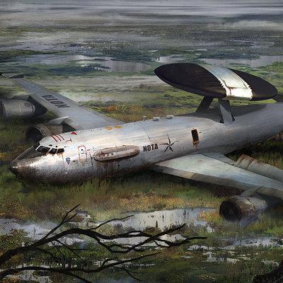 Roberto robert downed plane