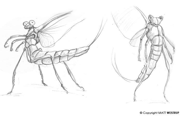 Character ark mayfly 01